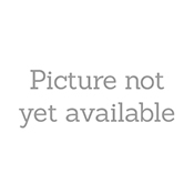 Mobiparts Regular Tempered Glass Apple iPhone 13 Pro Max - With Applicator